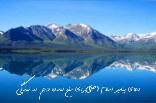 28362736392637-310x205 دعای پیامبر اسلام (ص) برای رفع اندوه و غم در زندگی