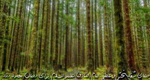 28367396392637-310x165 دعای شفابخش و عظیم امام صادق علیه السلام برای درمان معده درد