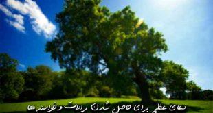 92732639729360267-310x165 دعای عظیم برای حاصل شدن مرادات و خواسته ها