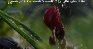 23860703690670-310x165 دعا و دستور عظیم برای جلب محبت زن با اثر تضمینی