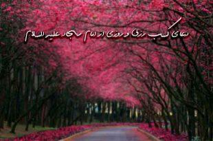 2738263729367960237-310x205 دعای کسب رزق و روزی از امام سجاد علیه السلام