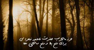 2830379627390267-310x165 حرز مجرب حضرت فاطمه زهرا (س) برای دفع بلا و رفع سختی ها