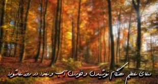 327806308637960370-1-310x165 دعای عظیم رفع درد امام صادق علیه السلام مجرب و تضمینی