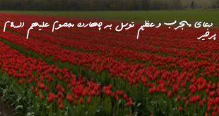2738607936207936270-310x165 دعای مجرب و عظیم توسل به چهارده معصوم علیهم السلام پرخیر