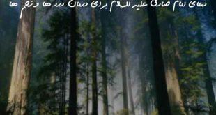 728360783620739607-310x165 دعای امام صادق علیه السلام برای درمان درد ها و زخم ها