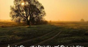7386038706796027-310x165 دعای مفید و مجرب برای ازدواج و جلب محبت پرخیر