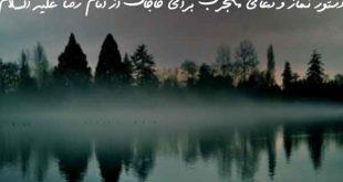 208380623769073-310x165 دستور نماز و دعای مجرب برای حاجات از امام رضا علیه السلام
