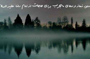 208380623769073-310x205 دستور نماز و دعای مجرب برای حاجات از امام رضا علیه السلام