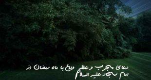 2738603806279067962073-310x165 دعای مجرب و عظیم وداع با ماه رمضان از امام سجاد علیه السلام