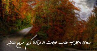 73286203679692067-310x165 دعای مجرب طلب حاجت از قرآن کریم سریع التاثیر
