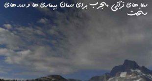 23860830627206392607-310x165 دعا های قرآنی مجرب برای درمان بیماری ها و درد های سخت