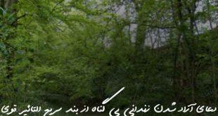 032703680237-310x165 دعای آزاد شدن زندانی بی گناه از بند سریع التاثیر قوی