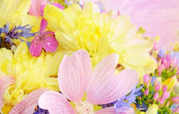 086307860287 دعا برای شفای مریضی اعضای خانواده مجرب
