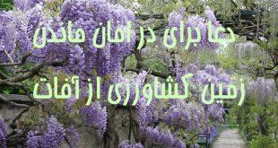 k9wc67dz-1-310x165 دعا برای در امان ماندن زمین کشاورزی از آفات