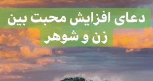 D4C67E8B-BA43-470B-87D8-E9DBD1A00021-310x165 دعای افزایش محبت بین زن و شوهر - دعای جلوگیری از خصومت میان زوجین