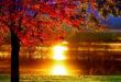 9B579A8C-A326-44BA-AEF9-C729265D1CC0-110x75 دعای مجرب و قوی جهت وفاداری شدید - دعای افزایش مهر و محبت همسر