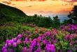 7DBBE508-01C5-4A1A-B97A-C538EA9CD9AB-110x75 بهترین زمان جهت دعا و نیایش با خداوند مهربان